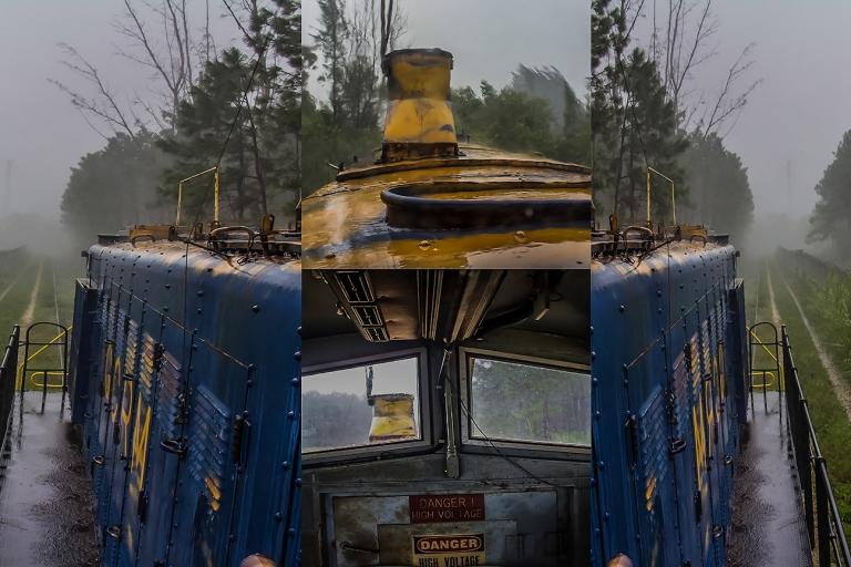 Gaona High Res JPEG 4.jpg