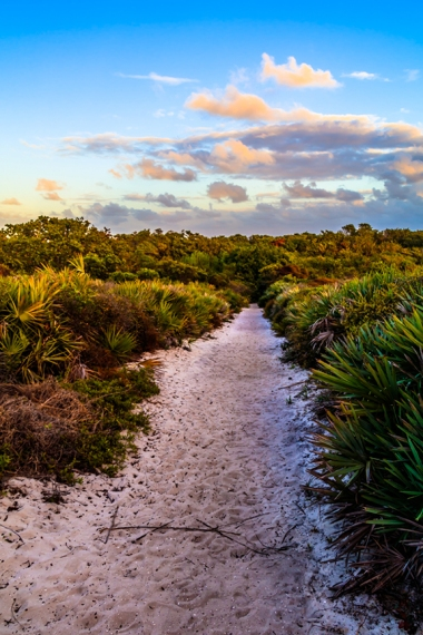 Juno Dunes Natural Area - Palm Beach County